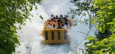Parc Astérix - http://www.activexplore.com/activity/parc-asterix/