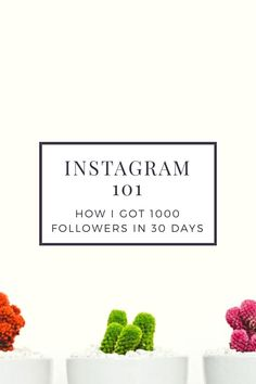 in 30 days Instagram Marketing Tips, Instagram Tips, Social Media Content, Social Media Tips, Photo Fix, How To Get Clients, Marketing Techniques, Marketing Tools, Photography Lessons