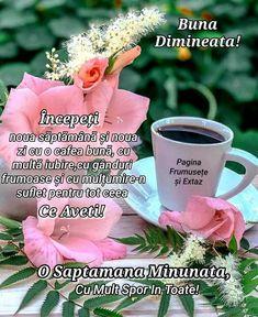 Spiritual Quotes, Spirituality, Motivation, Day, Plants, Spirit Quotes, Spirituality Quotes, Spiritual, Plant