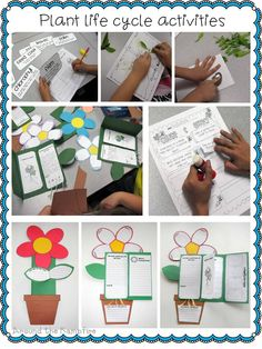 Blog post with creative ideas that combine art, science, and writing for a plant unit!