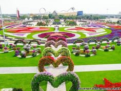 Desert miracle - Worlds largest natural flower garden opens in Dubai The Dubai Miracle Garden has more than 45 million flowers. But the real miracle is that it was built at all #dubai #uae