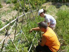 Vanesa también nos enseña cómo trabajar en el huerto.