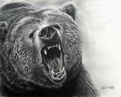 10  Bear Drawings Showcase, http://hative.com/bear-drawings/,