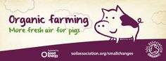 Organic farming recognises the direct connection between our health and how the food we eat is produced. Artificial fertilisers are banned and farmers develop fertile soil by rotating crops and using compost, manure and clover. http://www.soilassociation.org/whatisorganic/organicfarming