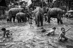 The Winners Of The 2014 Sony World Photography Awards