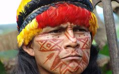 Tribesmen Promise Fight to the Death to Save the Rainforest - Ecuador's plan to sell over a third of its pristine Amazonian rain-forest to Chinese oil industrialists has been met with a heartbreaking turn of events. Local tribes who inhabit the region have vowed to give their lives in defense of the sacred jungles they call home.  - http://www.policymic.com/articles/39881/tribesmen-promise-fight-to-the-death-to-save-the-rainforest