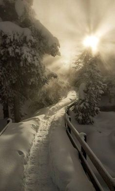 Winter Landscape Photography Wonderland Paths Ideas For 2019 Winter Love, Winter Snow, Winter White, Foto Gif, Beautiful Places, Beautiful Pictures, 3d Fantasy, Winter Magic, Winter Scenery