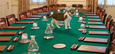 Meet Larry - the Chief Mouser to the Cabinet Office of the United Kingdom of Great Britain and Northern Ireland. This is one great working cat! http://moderncat.com/articles/larry-10-downing-street-cat/67440