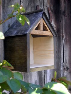 barn swallow nesting box