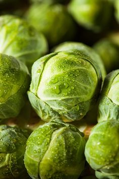 Raw Green Organic Brussel Sprouts by Brent Hofacker - Photo 87138721 - 500px