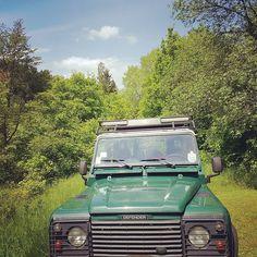 #wild #natur #nature #outdoor #today #summer #sommer #sun #sonne #minette #luxembourg #luxemburg #forest #foret #wald #defender #landrover #landroverdefender #ellergronn #eschalzette by andy.pee #wild #natur #nature #outdoor #today #summer #sommer #sun #sonne #minette #luxembourg #luxemburg #forest #foret #wald #defender #landrover #landroverdefender #ellergronn #eschalzette