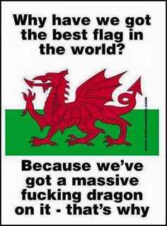 """""""what country has the best flag? you can't rank them they are all uniquely interesting Wales"""" Wales Flag, Wales Rugby, Wales Uk, North Wales, Y Ddraig Goch, Rugby Funny, Great Britan, Celtic Connections, Rugby Poster"""