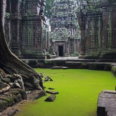 Abandoned Ta Prohm Temple in Angkor, Siem Reap Province, Cambodia