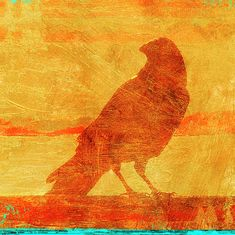 Image Collage, Airplane Art, Train Art, Crows Ravens, 12 Image, Framed Prints, Canvas Prints, Coastal Art, Fish Art