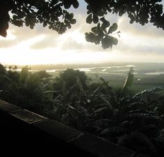 #brazil #dawn #beautiful #nature