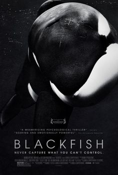 My absolute favorite documentary. Loved it. Highly recommended. It made me hate Seaworld and love Orcas..