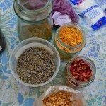How to use Fresh Herbs & Flowers in Beauty Products