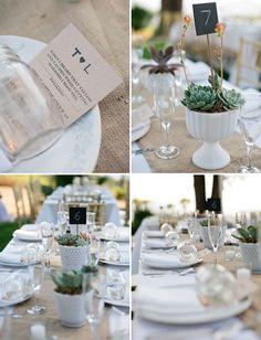 succulent centerpieces in milk glass - Condor's Nest Wedding: Lauren + Taylor, Photography: Swoon by Katie - via greenweddingshoes