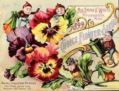 Choice flower seeds   1899...cute little elves too !