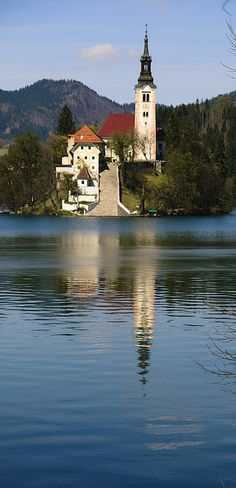 Lake Bled, Slovenia. Beautiful place. And the best dessert ever.