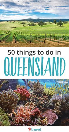 50 Things to Do in Q
