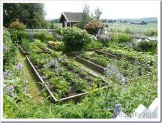 lovely garden in Norway
