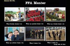 Cause my friends think I take sooo many field trips with FFA.