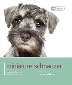 This dog expert guide gives you all the information you will need to provide your Miniature Schnauzer with the care and training that will enable him to lead a happy and fulfilling life. Written by ex