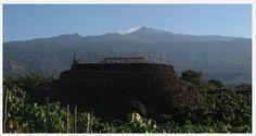 Best place to taste wine in 2012.I Vigneri, Vigna Centenaria Vineyard of Salvo Foti, Etna, Sicily.