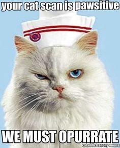 Nurse Pawchet