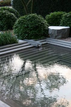 I like the contrast of straight lines within the pool and the roundness of the hedge. We could mimic this with The existing box hedges.