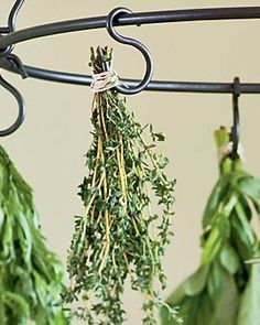 S hooks for hanging herbs