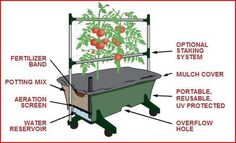 Great tutorial on how to build a wicking bed/earth box on the cheap.
