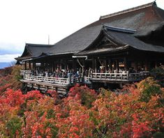 Kiyomizu-dera and Kinkaku-ji Temples, Kyoto  Springs feed the Otowa Waterfall, and Buddhist pilgrims drink the sacred water by following strict ritual. Visitors also take in the panoramic view of Kyoto's city center