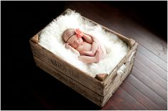 Newborn Baby Photography - Credit: Bubbaloo Photography