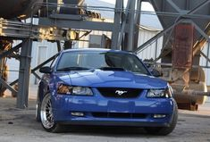 New Edge Mustang, Mustang Cars, Mustangs, Ford, Bmw, Trucks, Building, Vehicles, Awesome