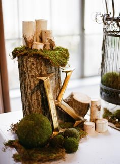 Check out this blog entry. This wedding has a ton of earthy, burlap-including elements in it @Kelsey Viestenz