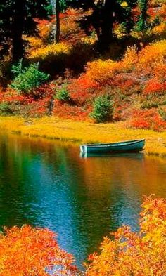 Wow the beautiful fall colors and reflection in the lake is awesome. I would love to canoe it. Beautiful World, Beautiful Places, Peaceful Places, Nature Sauvage, Autumn Scenes, Landscape Wallpaper, All Nature, Fall Pictures, Belle Photo