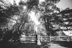 stunning black and white photos at Laurel Creek Manor