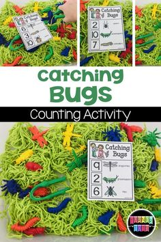 Catching Bugs Counting Activity Add some bugs to your sensory bin and have preschoolers catch the matching number of insects Sensory Activities For Preschoolers, Insect Activities, Eyfs Activities, Spring Activities, Preschool Activities, Montessori Preschool, Montessori Elementary, Therapy Activities, Spring Theme For Preschool