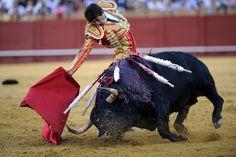 Spanje erkent stierenvechten als cultureel erfgoed - De Standaard