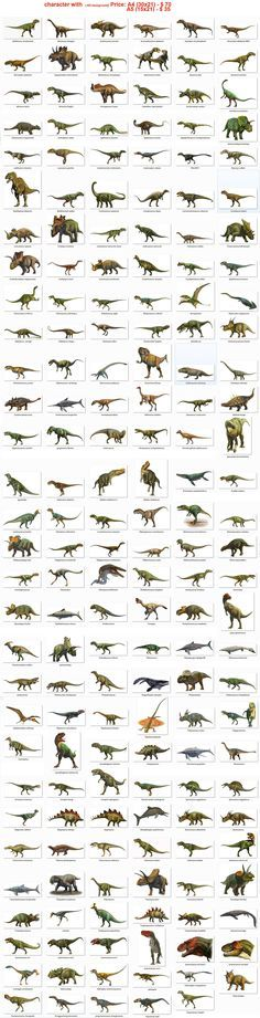 Dinosaurs!.... Dinosaur Art, Dinosaur Fossils, Dinosaur Posters, Dinosaur Crafts, Earth Science, Science And Nature, Life Science, Jurassic Park World, Extinct Animals