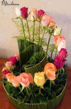 Rosas!!!!!!!!!!!