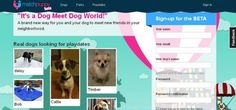 It's online matchmaking for dogs!  Genius.