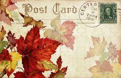 Lilac & Lavender - Autumn Postcard
