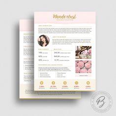 Blog Media Kit Template   Ad Rate Sheet Template  Press Kit