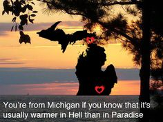 You're from Michigan if...