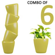 Yuccabe Italia Combo for 6 Stoic Yellow Self Watering Planter