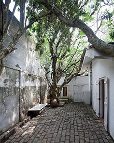 Courtyard in Geoffrey Bawa's house, Colombo colombo, paved inner courtyard with trees and minimal benches