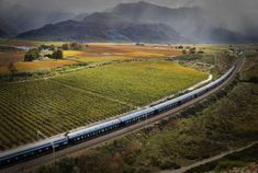A Southern African train journey is just what you need if you're looking for a holiday with stunning views and luxury accommodation. A train journey offers you a unique experience unlike any other getaway